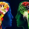 El curioso impacto de las percepciones