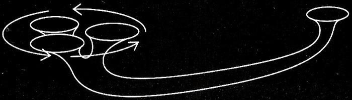 Agujero de gusano cósmico
