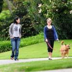 Las caminatas con los perros son una oportunidad ideal para interactuar con otras personas.