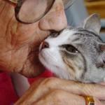 Los beneficios de una mascota para los ancianos son incalculables.