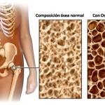 Hay que suministrar suficientes minerales para evitar que los huesos se vuelvan débiles y se fracturen.