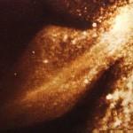 Fotografía subacuática del monstruo con la imagen de la famosa aleta romboidal (Robert Rines).