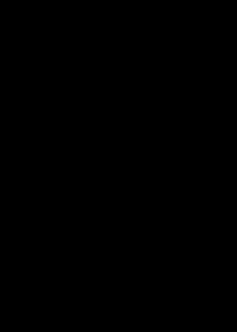 Formas de los supuestos avistamientos del monstruo del lago Ness.