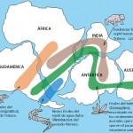 La distribución geográfica de los fósiles fue uno de los argumentos que usó Alfred Wegener para demostrar la veracidad de su teoría.