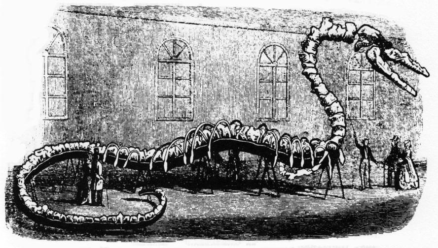 Un ingenioso remedo de serpiente