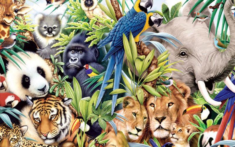 """¿""""Hablan"""" los animales entre sí?"""