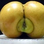 Siendo lo mismo la mierda y la manzana, no son lo mismo; una es servicio y la otra se sirve.
