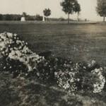 Tumba de James N. Sutton, Arlington National Cemetery, octubre de 1907.
