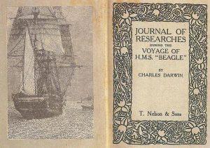 El viaje de Darwin a bordo del Beagle le aportó los datos precisos para poder elaborar posteriormente la teoría de la evolución.