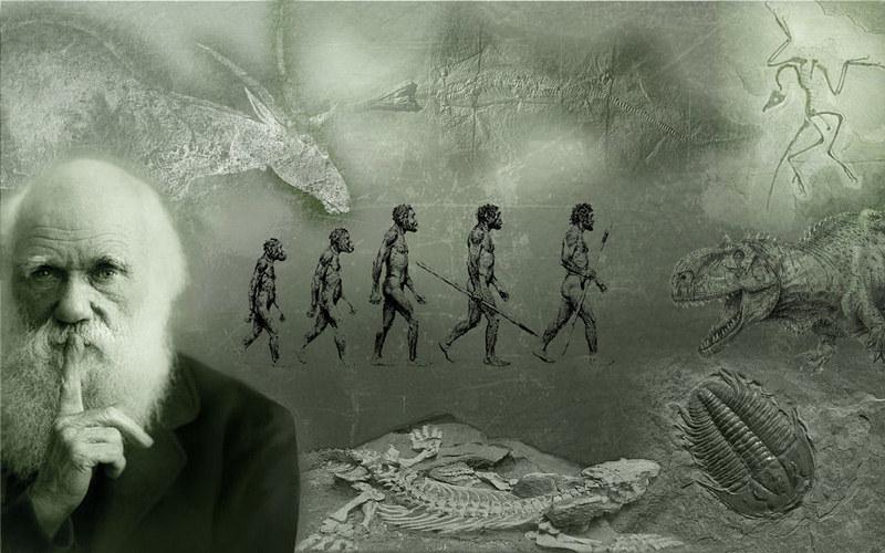 Impacto histórico de la teoría evolutiva.