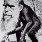 Caricatura sobre Charles Darwin en la revista Hornet donde él es representado con características propias de un primate, a manera de burla por su teoría evolutiva.