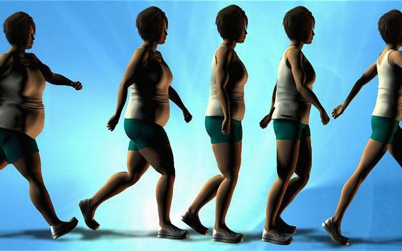 Cuáles son las claves del éxito para perder peso.