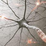 Existen ciertas vías misteriosas en las que cuerpo y mente interactúan, y que pueden afectar a la salud.