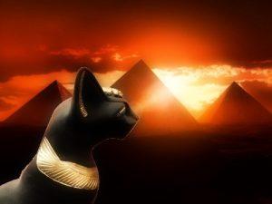 Los egipcios pensaban que los ojos del gato reflejaban el poder y la luz del sol en la tierra durante las horas de oscuridad, y por ello les salvaban de la noche eterna y protegían de la mala suerte.