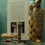 Primero fueron usados para proteger las casas de las pequeñas serpientes y roedores, pero después se convirtieron en dioses. Al morir, eran embalsamados con los mismos materiales e idéntico cuidado que empleaban los egipcios con cualquier otro miembro de una familia.