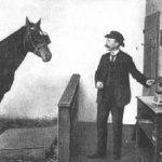 Nunca existió ningún tipo de fraude tras las aparentes aptitudes de un animal que realmente parecía estar dotado intelectualmente.