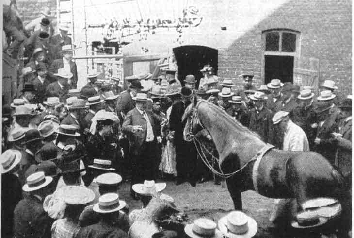 El caballo Hans durante una exhibición