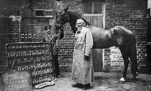 Hans junto a su propietario Wilhelm von Osten.