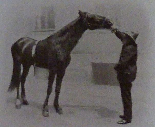 Hans y su dueño Wilhelm von Osten